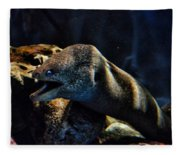 Pacific Moray Eel Fleece Blanket