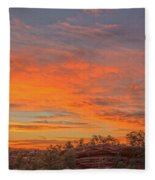 Painful Truth Is Better Than A Pleasant Lie.  Fleece Blanket