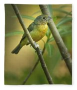 Painted Bunting Female Fleece Blanket