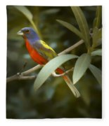 Painted Bunting Male Fleece Blanket