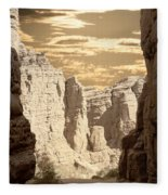 Painted Canyon Trail Fleece Blanket