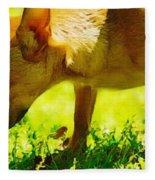 Painted Chihuahua  Fleece Blanket