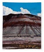 Painted Desert #5 Fleece Blanket
