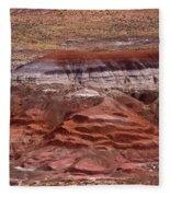 Painted Desert #7 Fleece Blanket