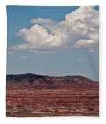 Painted Desert #8 Fleece Blanket