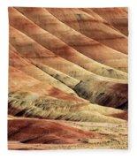 Painted Hills Textures Fleece Blanket