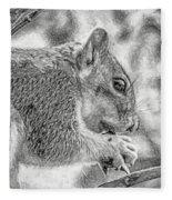 Painted Squirrel Fleece Blanket