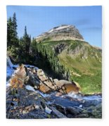 Paiota Falls - Glacier National Park Fleece Blanket