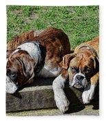 Pair Of Boxers Fleece Blanket
