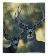 Pair Of Bucks Fleece Blanket
