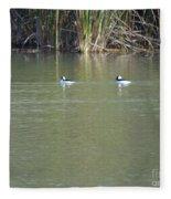 Pair Of Bufflehead Ducks  Fleece Blanket