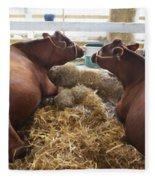 Pair Of Cows Fleece Blanket