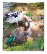 Pair Of Mallard Duck 4 Fleece Blanket