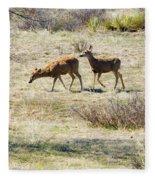 Pair Of Mule Deer Grazing At Chatfield Fleece Blanket