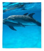 Pair Of Spotted Dolphins Fleece Blanket