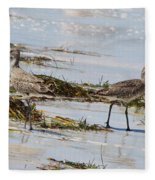 Pair Of Willets Fleece Blanket