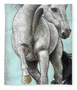 Paisleylusian Fleece Blanket