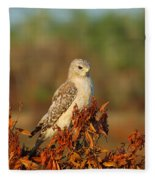 Pale Male Fleece Blanket