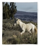 Pallaton Fleece Blanket