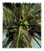 Palm 1 Fleece Blanket