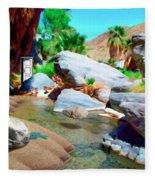 Palm Canyon Park Fleece Blanket