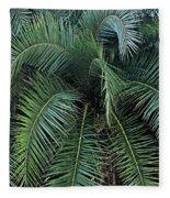 Palm Fronds Fleece Blanket