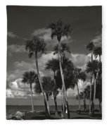 Palm Group In Florida Bw Fleece Blanket