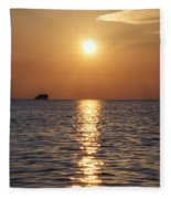 Palm Harbor Florida Fleece Blanket