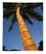Palm In Blue Sky Fleece Blanket
