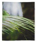 Palm Tree 5 Fleece Blanket