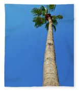 Palm Tree Against Blue Sky Fleece Blanket