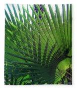 Palm Tree, Big Leafs Fleece Blanket