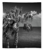 Palm Trees In Black And White At Laguna Beach Fleece Blanket