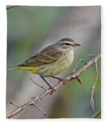 Palm Warbler Fleece Blanket