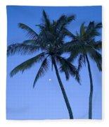 Palms And Blue Sky Fleece Blanket