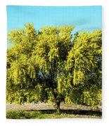 Palo Verde Fleece Blanket