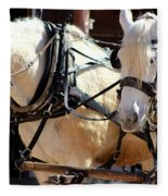 Palomino Horses Fleece Blanket