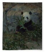 Panda Lunch Fleece Blanket