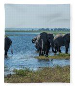 Panorama Of Elephant Herd Drinking From River Fleece Blanket