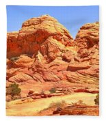 Panoramic Coyote Buttes Landscape Fleece Blanket