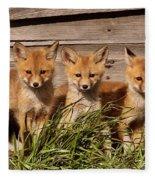 Panoramic Fox Kits Fleece Blanket