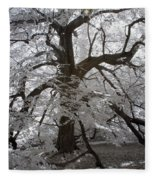 Paper Mulberry In Infrared Fleece Blanket