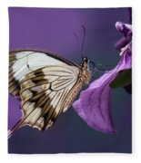 Papilio Dardanus On Violet Flowers Fleece Blanket