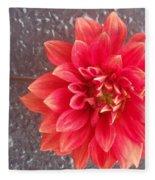 Parisian Flower Fleece Blanket