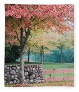 Park In Autumn/fall Colors Fleece Blanket