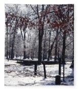 Park In The Snow Fleece Blanket