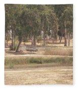 Park Near The Source Of The Yarkon River Fleece Blanket