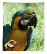 Parrot Eating Nut Fleece Blanket