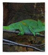 Parson's Chameleon Fleece Blanket