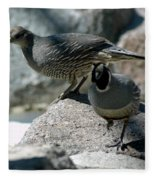Partridge Pair Reno Nv Fleece Blanket